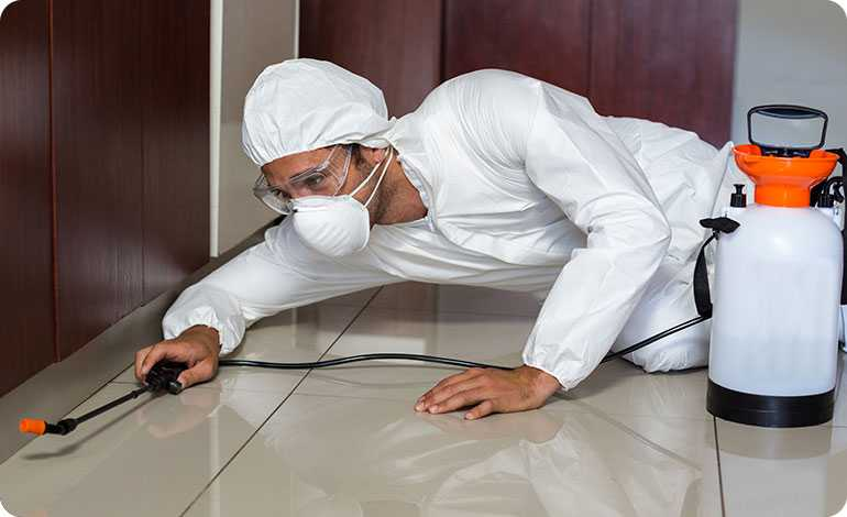 How are commercial and residential pest control services different?